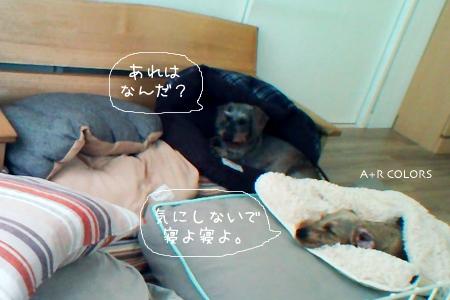may_26.jpg