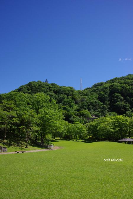 may_66.jpg